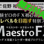 GIMP-maestro